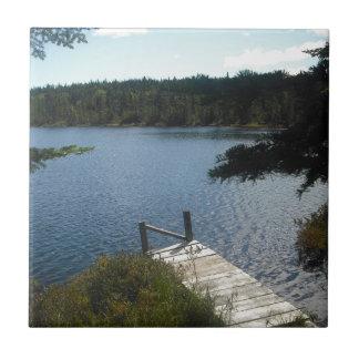 メインの池 正方形タイル小