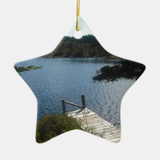 メインの池 陶器製星型オーナメント