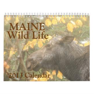 メインの野生の生命2013カレンダー カレンダー