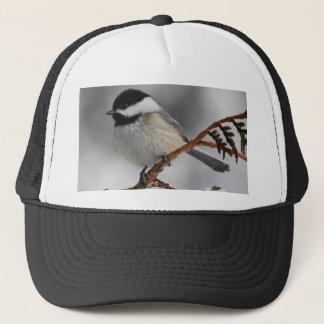 メインの《鳥》アメリカゴガラ キャップ
