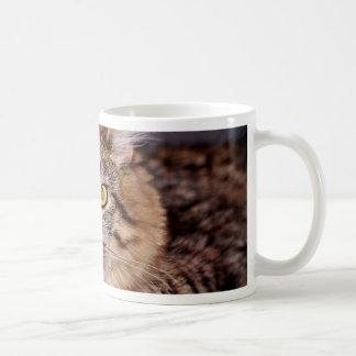 メインCoone猫 コーヒーマグカップ