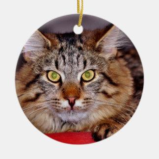 メインCoone猫 セラミックオーナメント