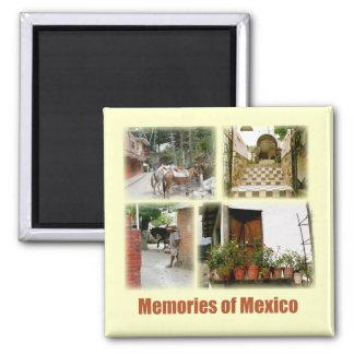 メキシコの記憶 マグネット