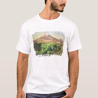メキシコ田舎1887年の小さい火山(油 Tシャツ