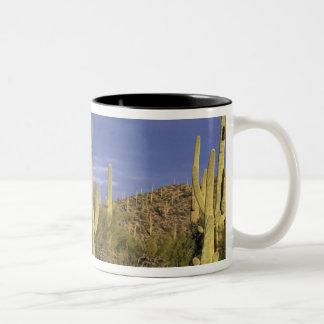 メキシコ、Baja del NorteのCatavinaの砂漠の国民2 ツートーンマグカップ