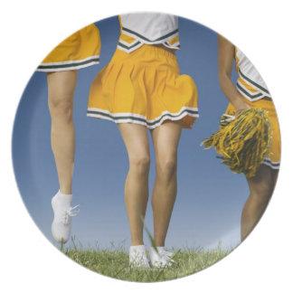 メスのチアリーダーの足(低いセクション) プレート