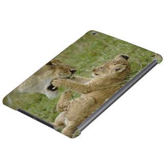 メスのライオン、マサイ語マラと遊んでいるライオンの子 iPad AIRケース
