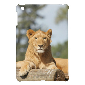 メスのライオン iPad MINIケース