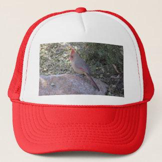 メスの北の(鳥)ショウジョウコウカンチョウ キャップ