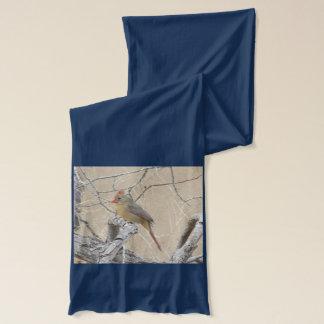メスの北の(鳥)ショウジョウコウカンチョウ スカーフ