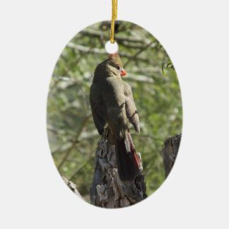 メスの北の(鳥)ショウジョウコウカンチョウ セラミックオーナメント