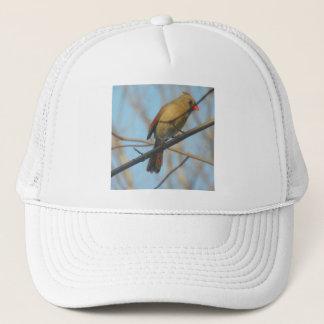 メスの(鳥)ショウジョウコウカンチョウか鳥 キャップ