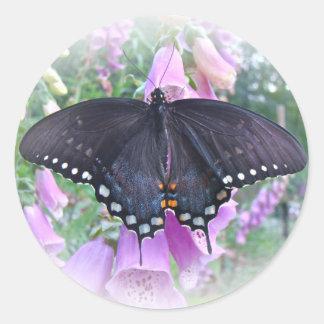 メスのSpicebushのアゲハチョウの蝶 ラウンドシール