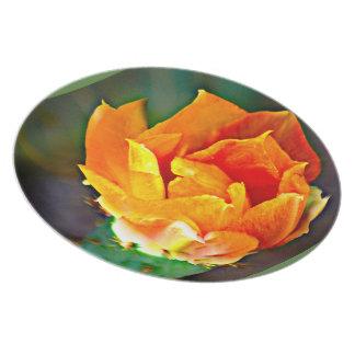 メラミンプレート-オレンジウチワサボテンサボテンの花 プレート