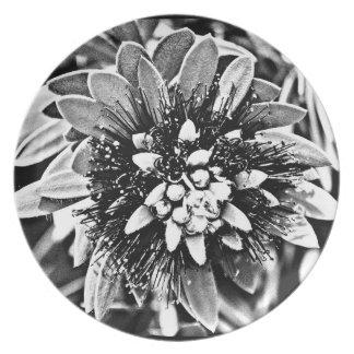 """メラミンプレート""""B&Wの白いサボテンの花"""" プレート"""