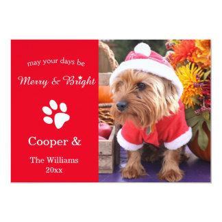 メリーで及び明るくカスタムなクリスマスペット写真カード カード