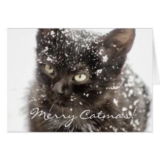 メリーなCatmas猫のクリスマスの挨拶状 カード