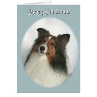 メリークリスマスのシェットランド・シープドッグ カード