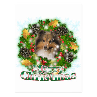メリークリスマスのシェットランド・シープドッグ ポストカード