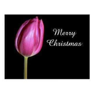 メリークリスマスのピンクのチューリップの花の写真の花柄 ポストカード