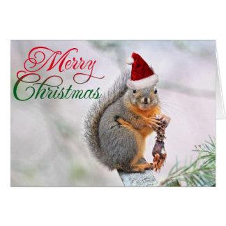 メリークリスマスのリス グリーティングカード