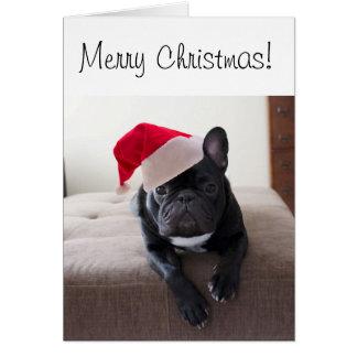 メリークリスマスのFrenchieカード カード