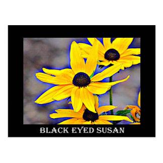メリーランド黒によって注目されるスーザン ポストカード