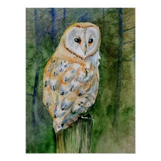 メンフクロウの水彩画 ポスター