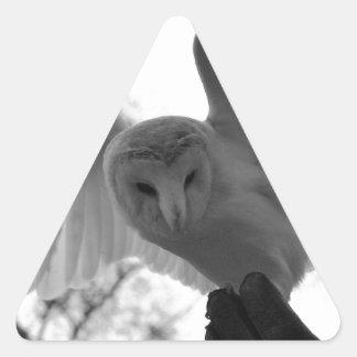 メンフクロウ 三角形シール