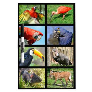 モザイク写真の南アフリカ動物 ホワイトボード