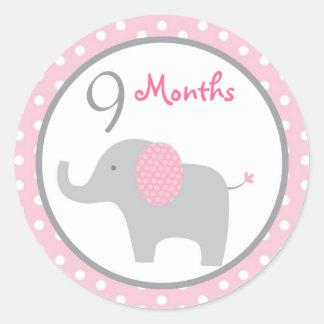 モダンなピンク象の女の子の月例マイル標石のステッカー ラウンドシール