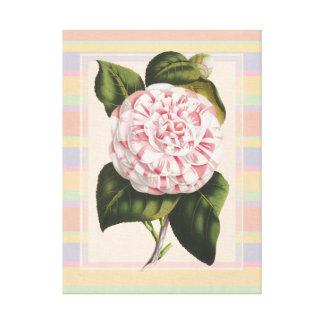 モダンなヴィンテージのツバキのかわいらしいピンクおよび白 キャンバスプリント