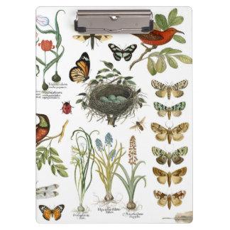 モダンなヴィンテージのフランスのな植物の鳥および花 クリップボード