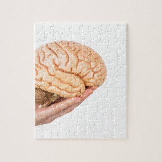 モデル人間の脳を白で隔離されて握ることを渡して下さい ジグソーパズル