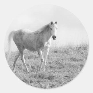 モノクロ白馬 ラウンドシール
