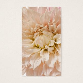 モモ、ピンク、白、及びクリーム色のダリア-ダリア 名刺