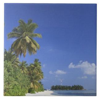 モルディブのMeemuの環礁、Medhufushiの島 正方形タイル大