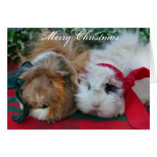 モルモットのクリスマスカード カード