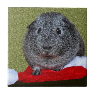 モルモットのクリスマス タイル