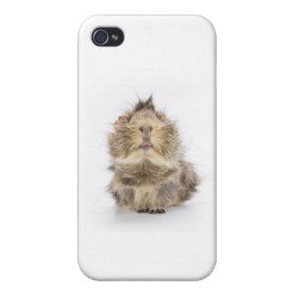 モルモット iPhone 4/4S ケース