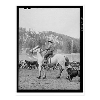 モンタナのカウボーイ1940年 ポストカード