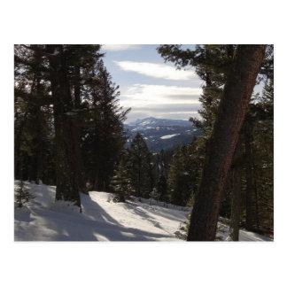 モンタナの冬のマディソン山 ポストカード