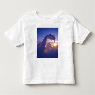 モンタナの白い魚の範囲のSnowghosts トドラーTシャツ
