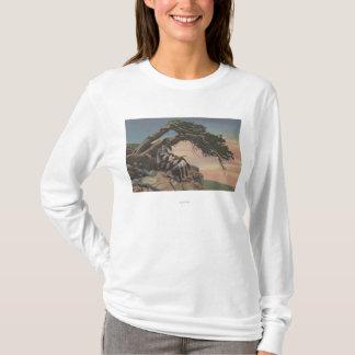 モンタナ-グレーシャー国立公園のインディアンの酋長 Tシャツ