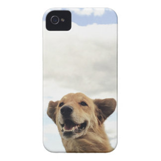 モンタナ、米国 iPhone 4 Case-Mate ケース