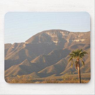 モンテレー、メキシコの近くの砂漠牧場景色 マウスパッド