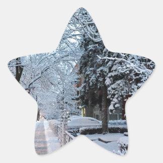 モントリオールの冬 星シール