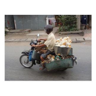 モーターバイクベトナムのアヒル ポストカード