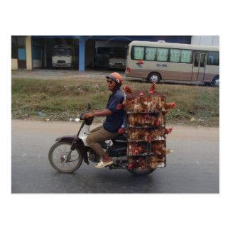 モーターバイクベトナムの鶏 ポストカード