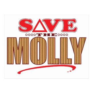 モーリーの保存 ポストカード